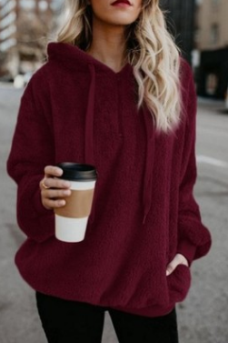 Long - sleeved hooded blouse in solid color